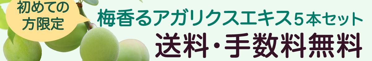 初めての方限定 梅香るアガリクスエキス5本セット 送料・手数料無料