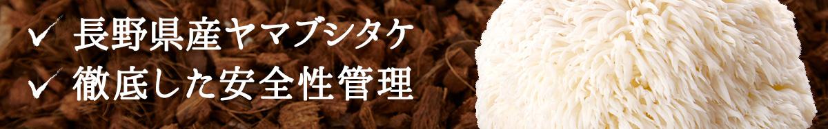 長野県産ヤマブシタケ 徹底した安全性管理