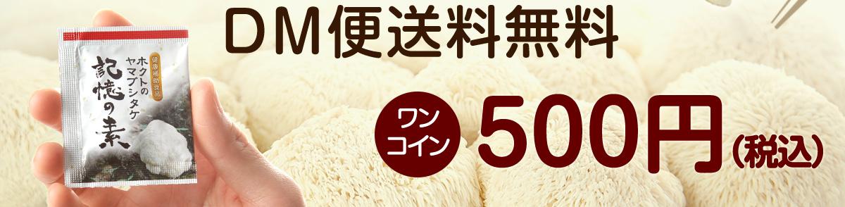 DM便送料無料 ワンコイン 500円(税込)